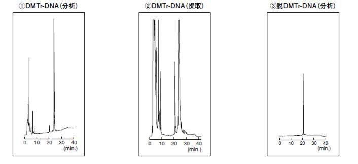低聚核苷酸分析提取专用色谱柱