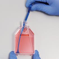 iP-TEC 迷你细胞刮刀150-13