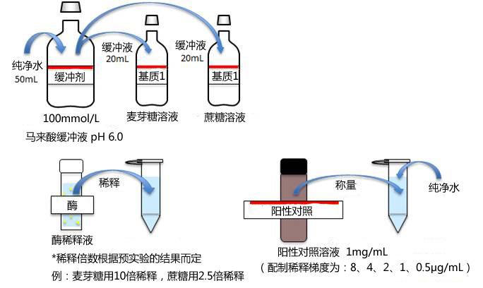 α-葡萄糖苷酶活性抑制检测试剂盒
