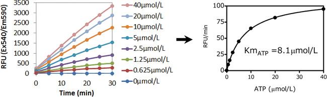 Fluorospark® 激酶/ADP 多重-检测试剂盒