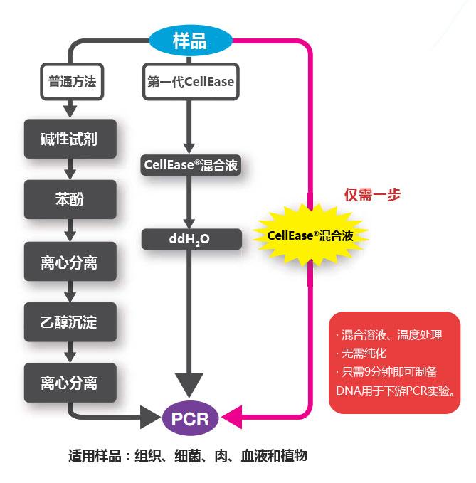 CellEase® II DNA快速提取试剂盒