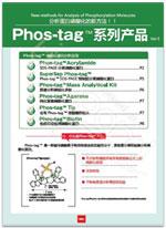 SuperSep Phos-tag™ 预制胶