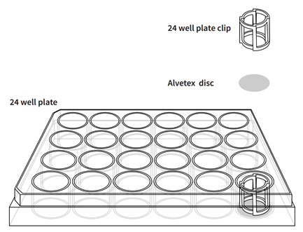 Alvetex™ 3D细胞培养系统
