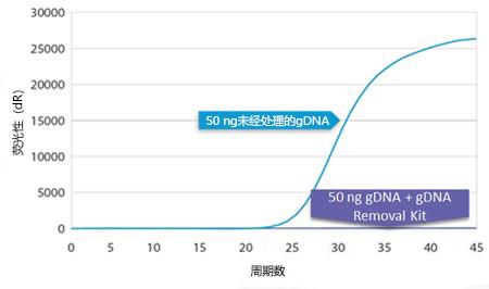 gDNA removal kit