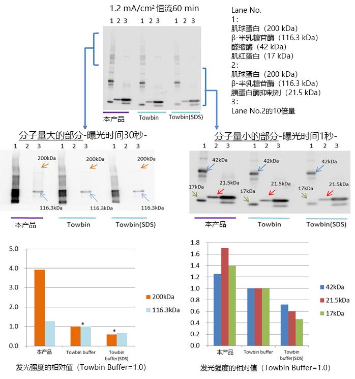 AquaBlot™ 10×High Efficiency Transfer Buffer