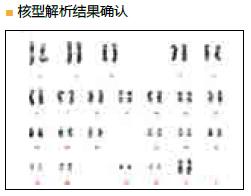 StemSure® 人多能干细胞培养基