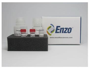 溶酶体细胞毒理检测试剂盒