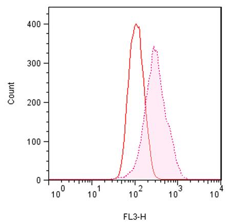 ProteoStat 蛋白聚集小体检测试剂盒