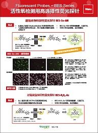 BES特异性荧光探针