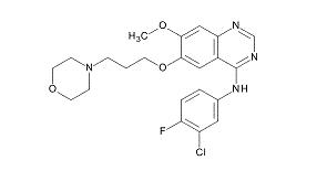 EGFR酪氨酸激酶抑制剂——吉非替尼