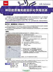 神经胶质瘤免疫组织化学用抗体