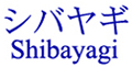 Shibayagi 大鼠胰岛素 ELISA试剂盒(RTU)