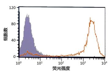 iPSelector (Anti-LNFP Ⅰ, Human, Mouse-Mono(R-17F))